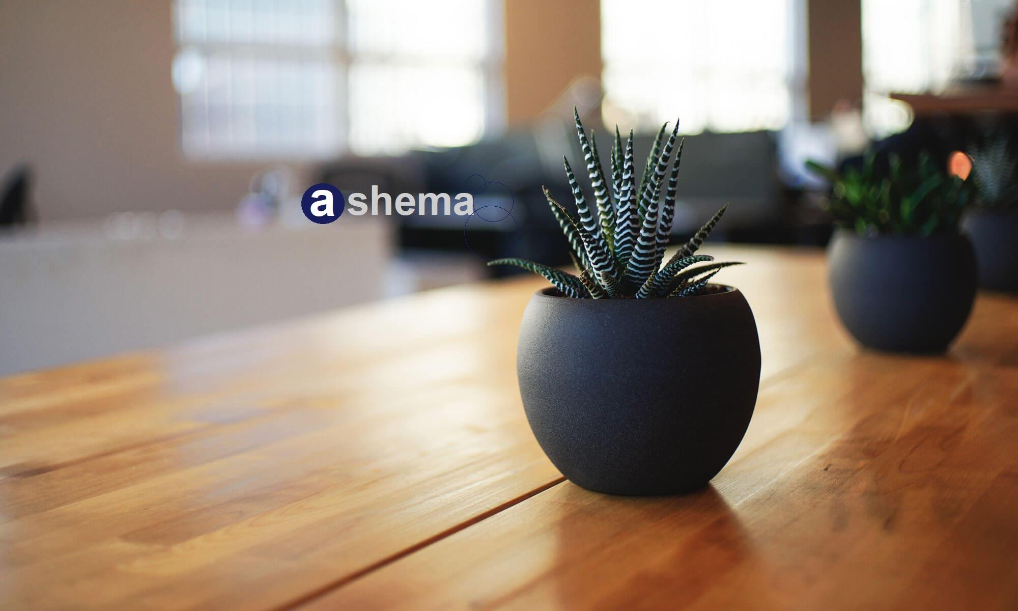 Ashema Asesores y Abogados